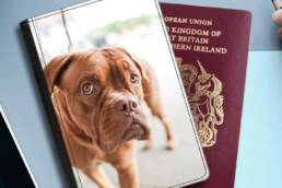 Passport covers designed by you