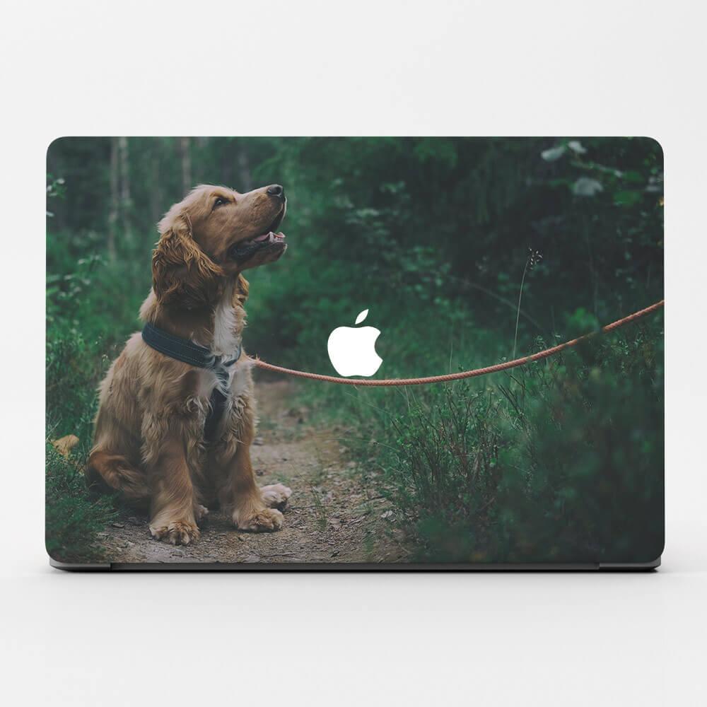 """11"""" MacBook Air (2010-2017) Cases"""
