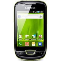 Samsung Galaxy Mini Skins