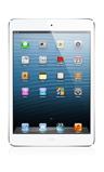 iPad Mini (1st Gen) Skin 12930