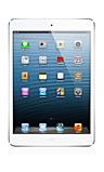iPad Mini (1st Gen) Skin