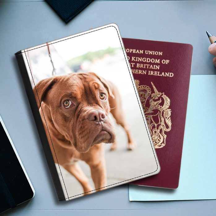Faux Leather Passport Cover (front cover prints only) 3653